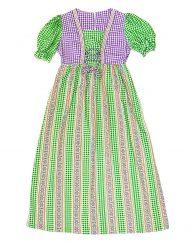 Vintage green/purple/white gingham maxi dress